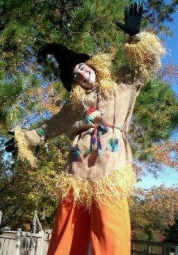 Scarecrow around Halloween time.