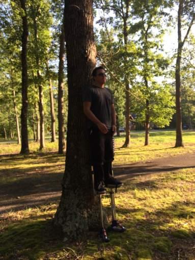 tree rest